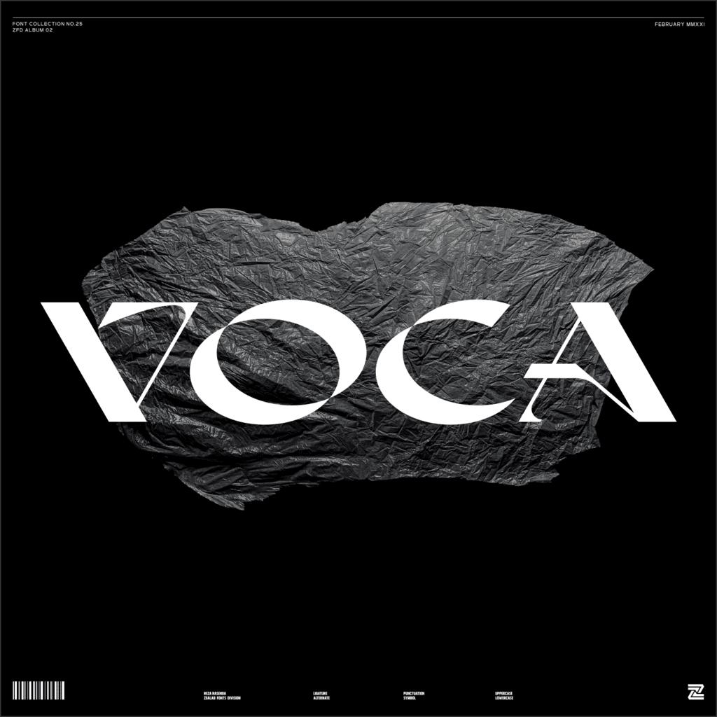 VOCA Display